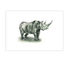 Přání Nosorožec